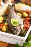 Baked Trout with Vegetables Royalty Free Stock Photos