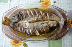 Baked trouts with soy sauce royalty free stock photo