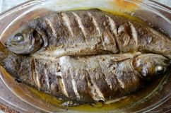 Baked trouts with soy sauce stock photography