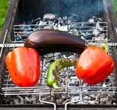 Baked vegetables on a grill Stock Images