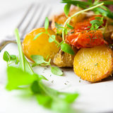 Baked vegetables with herbs Stock Images