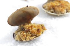 Baked vongole Stock Photos