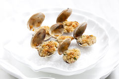 Baked vongoles Stock Images
