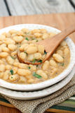Baked White Beans Stock Images
