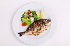Baked whole fish grilled on a plate with vegetables and lemon Stock Photos