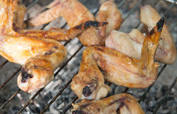 Baked wings grilled Stock Photography