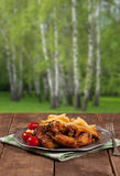 Baked wings to eat at a picnic in the forest. Royalty Free Stock Image