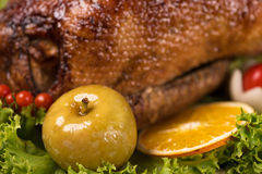Baked young duck Royalty Free Stock Image