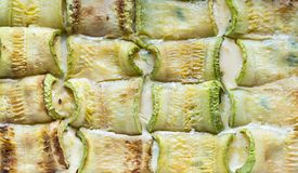 Baked zucchini rolls Royalty Free Stock Photo