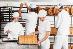 Baker που εξετάζει τα ψημένα ψωμιά στο αρτοποιείο Στοκ Φωτογραφίες