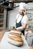 Baker with baked breads at the bakery. Baker carrying shovel with fresh baked breads standing near the professional oven in the bakery. Image focused on the royalty free stock images