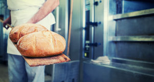 Baker in bakery with bread on shovel. Standing in front of oven, filtered image royalty free stock images