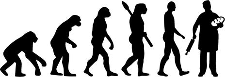 Baker Bakery Evolution Image stock