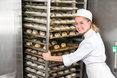 Baker at bakery putting rack of fresh dough in refrigerator Royalty Free Stock Photography