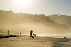 Baker Beach Sunlight Glow Royalty Free Stock Images