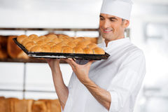 Baker Carrying Fresh Breads In Tray Stock Photos