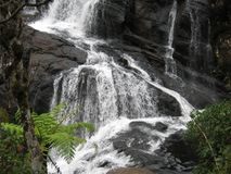 Baker falls, Ceylon Stock Photo