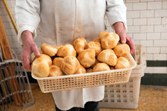Baker holding a basketful of freshly baked rolls Royalty Free Stock Images