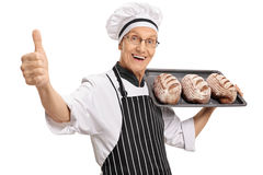 Baker holding with loaves of bread making thumb up sign. Joyful baker holding a tray with loaves of bread and making a thumb up sign isolated on white background Stock Image