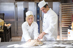 Baker instruction apprentice in kneading bread dough Royalty Free Stock Photography