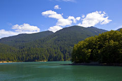 Baker Lake Royalty Free Stock Photo