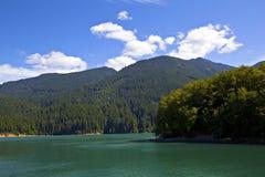 Baker Lake Royalty Free Stock Photo