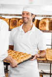 Baker Looking At Colleague While Carrying Bread Loaves. Smiling mid adult male baker looking at colleague while carrying bread loaves in tray at bakery stock photo