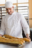 Baker looking at freshly baked baguettes Royalty Free Stock Photo