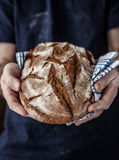 Baker man holding rustic loaf of bread in hands royalty free stock photography
