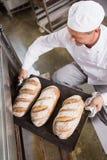 Baker prenant le plateau du pain frais hors du four photo libre de droits