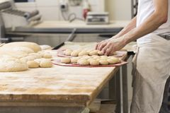 Baker with dough for buns. Baker preparing bread and buns for the oven Stock Image