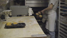 Baker pulls fresh muffins out of oven. Scene of baker pulling fresh muffins out of oven stock video