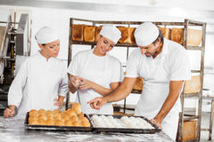 Baker's Analyzing Breads At Table In Bakery Royalty Free Stock Image