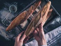 Baker`s hands hold fresh bread Stock Photo