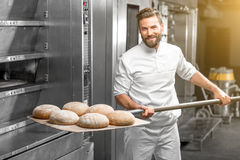 Baker taking out from the oven baked buckweat bread. Handsome baker in uniform taking out with shovel freshly baked buckweat bread from the oven at the stock photo