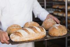 Baker tenant le plateau du pain image libre de droits