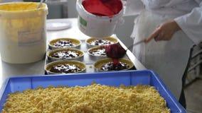 Baker vullende en gladmakende pasteigevallen in industriële bakkerij stock videobeelden