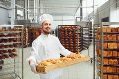 Baker in white uniform with trays of fresh bread costs in bakery. royalty free stock photography