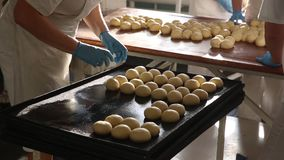 Bakers bake pies. Bakers on a bright sunny day pour buns from the dough and cook them for baking in the oven. Women bake pies. Confectioners make desserts stock footage