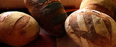 Bakery. Different kinds of bread in the bakery Stock Photo
