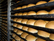The bakery. Fresh bread just out of the oven Royalty Free Stock Photos
