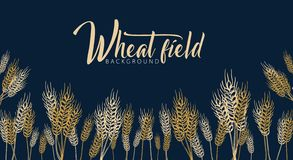 Bakery background with wheats. Linear graphic. Bread banner collection. Bread house. Vector illustration. royalty free stock image