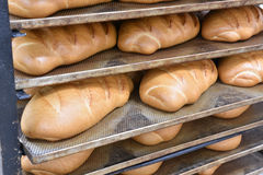 In the bakery Stock Photography
