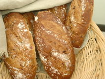 Bakery Bread. Fresh baked loaves of bread Stock Images