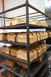 Bakery bread Stock Image