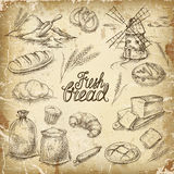 Bakery bread. Bread set. Pen sketch converted to s royalty free illustration