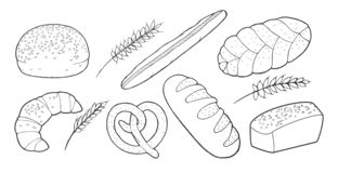 Bakery bread set. Vector illustration of a bakery bread set. Bun with sesame seeds, croissant, pretzel, French long loaf, braid, woven, spikelet of wheat royalty free illustration