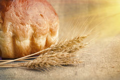 Bakery Bread and Sheaf of Wheat Ears. Still-life Royalty Free Stock Image