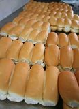 Bakery buns Stock Images
