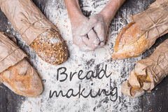 Bakery concept background. Hands and sorts of bread loaf Royalty Free Stock Photo